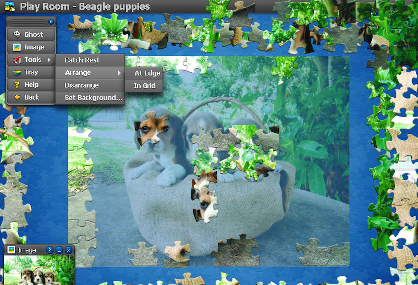 play free jigsaw puzzles for adults